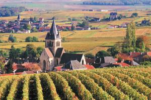 FRENCH-WINE-REGIONS-PHOTOS