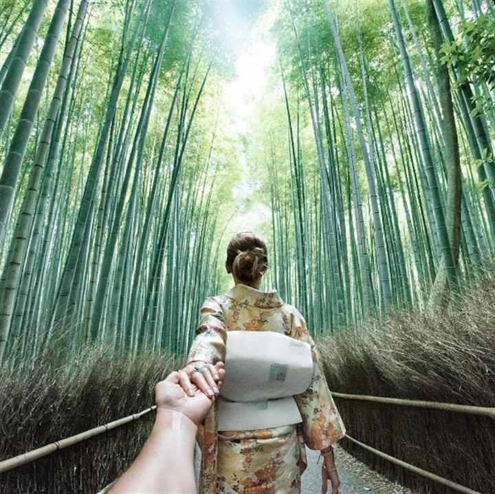 japonezii iubesc natura