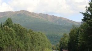 Mont_Albert