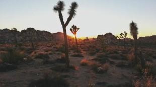 Top 5 locuri care te pot inspira pentru o excursie in desert